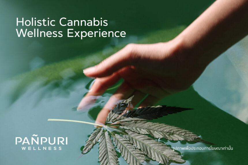 タイ_パンピューリ_Panpuri _大麻リラクゼーション_cannabis